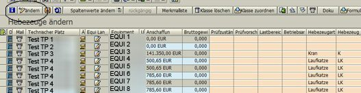 """SAP Klassifizierung - Equipmentliste für den Equipmenttyp """"Hebezeug"""" mit Stammdaten und Merkmalen"""