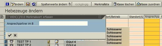 SAP Klassifizierung 04
