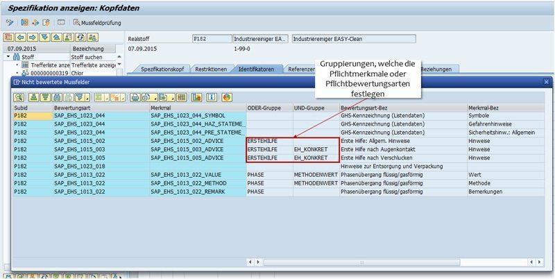 SAP Mussfeld - Stoff-Workbench - Ergebnisrückmeldung