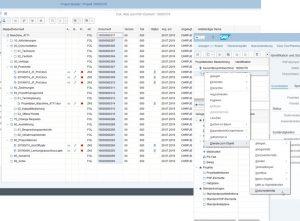 SAP Document Center - Dokumentenakte zum PSP Element